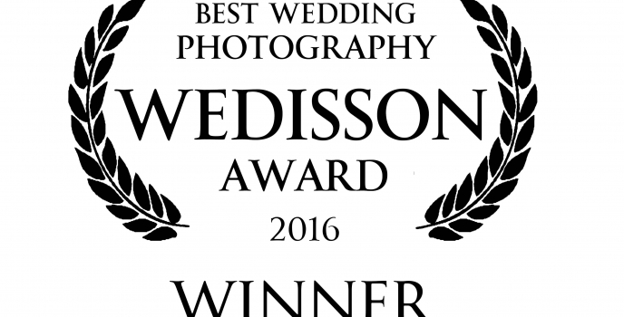 International Wedisson Award 2016